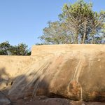 The Water Project: Ikuusya Community -  Sand Dam Curing