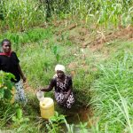 The Water Project: Emulakha Community, Nalianya Spring -  Fetching Water