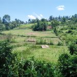 The Water Project: Mukoko Community, Mukoko Spring -  Beautiful Community Landscape