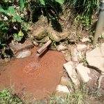 The Water Project: Mukangu Community, Lihungu Spring -  Current Water Source