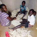 The Water Project: Emulakha Community, Nalianya Spring -  Shaving Maize