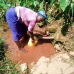 The Water Project: Mukangu Community, Lihungu Spring -  Fetching Water