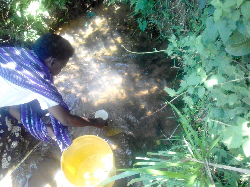 The Water Project : 7-kenya18309-matanyi-spring