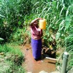 The Water Project: Mukangu Community, Lihungu Spring -  Carrying Water