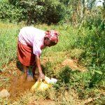 The Water Project: Sichinji Community, Makhatse Spring -  Fetching Water