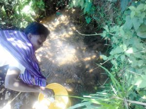 The Water Project:  Matanyi Spring