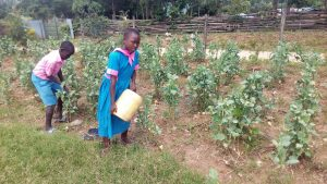 The Water Project:  Brevisious Lugadilo And Diana Mukhono Watering Vegetable Garden