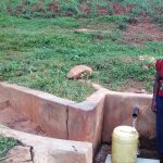 The Water Project: Simuli Community, Lihala Sifoto Spring -  Irene Munyasa