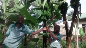 The Water Project:  Dan And Martin At The School Garden Where Banana Is Watered Using The Tank Water