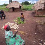 The Water Project: Ejinga-Ayikoru Community -  Around The Home Of Stephen Abida A Member On The Wsc