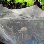 The Water Project: Komrabai Community, 35 Port Loko Road -  Mosquito Net