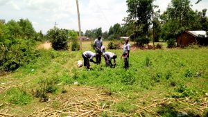 The Water Project:  Students Harvesting Vegetables