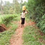 The Water Project: Musango Community, Emufutu Spring -  Carrying Water