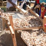 The Water Project: Kitooni Primary School -  Sifting