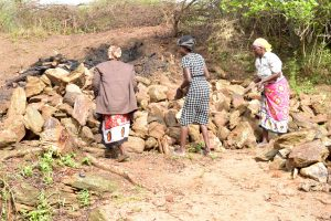 The Water Project:  Already Delivering Stones To The Potential Site