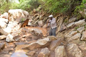 The Water Project:  Community Collecting Stones