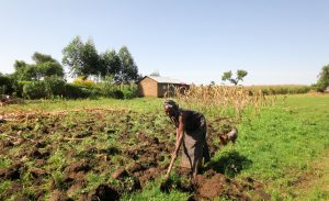 The Water Project:  A Woman Preparing For Planting