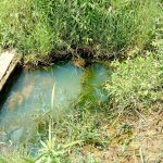 The Water Project: Mukhuyu Community, Kwawanzala Spring -  Current Water Source