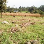 The Water Project: Musango Community, Mushikhulu Spring -  Community Landscape