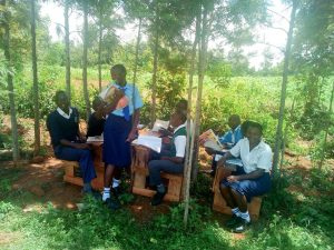 The Water Project:  Class Under The Trees