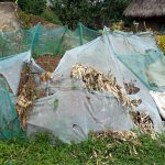 The Water Project: Musango Community, Mushikhulu Spring -  Mosquito Net Used As Fence