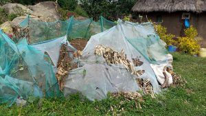 The Water Project:  Mosquito Net Used As Fence