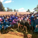 The Water Project: Sango Primary School -  Students Introducing Us To The School Cow
