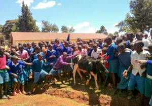 The Water Project:  Students Introducing Us To The School Cow