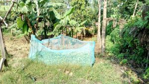 The Water Project:  Mosquito Nets Used As Fencing