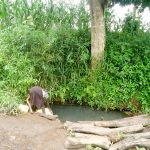 The Water Project: Karagalya Kawanga Community -  Alinega Fetching Water From Open Source
