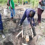 The Water Project: Alimugonza Community A -  Laying The Cement