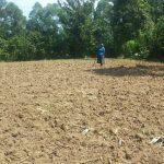 The Water Project: Emukangu Community, Okhaso Spring -  Community Farm