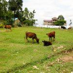 The Water Project: Shisere Community, Richard Okanga Spring -  Community