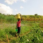 The Water Project: Shisere Community, Francis Atema Spring -  Carrying Water