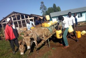 The Water Project:  Hired Donkey Cart