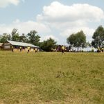 The Water Project: Ibwali Primary School -  School Grounds