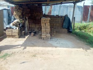 The Water Project:  Brick Business