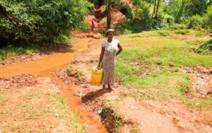 The Water Project:  Woman By The Spring