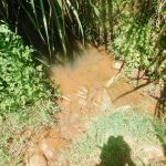 The Water Project: Ataku Community, Ngache Spring -  Current Water Source