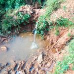 The Water Project: Shisere Community, Richard Okanga Spring -  Current Water Source