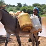 The Water Project: Kathuli Community -  Donkey
