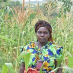 The Water Project: Tulimani Community A -  Agnes Stands Amid Her Growing Maize