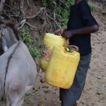 The Water Project: Kathungutu Community -  Loading Water Onto Donkey