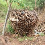 The Water Project: Mbiuni Community A -  Collected Firewood