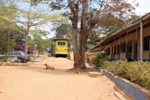 The Water Project:  School Bus And Dog