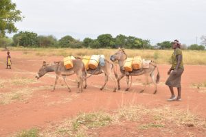 The Water Project:  Donkeys Carrying Water
