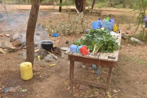 The Water Project:  Vegetables To Be Prepared For Cooking