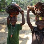 The Water Project: Lungi, Tonkoya Village -  Children Carrying Palm Plants
