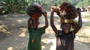 The Water Project:  Children Carrying Palm Plants