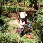 The Water Project: Hirumbi Community, Khalembi Spring -  Carrying Water